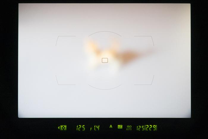 一眼レフの光学ファインダー