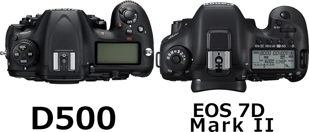 上面:D500 vs. EOS 7D Mark II