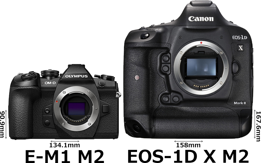 「OM-D E-M1 Mark II」と「EOS-1D X Mark II」 1