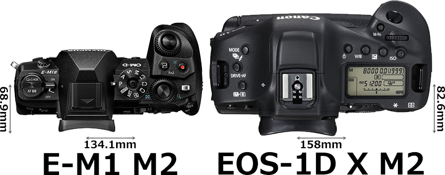 「OM-D E-M1 Mark II」と「EOS-1D X Mark II」 3