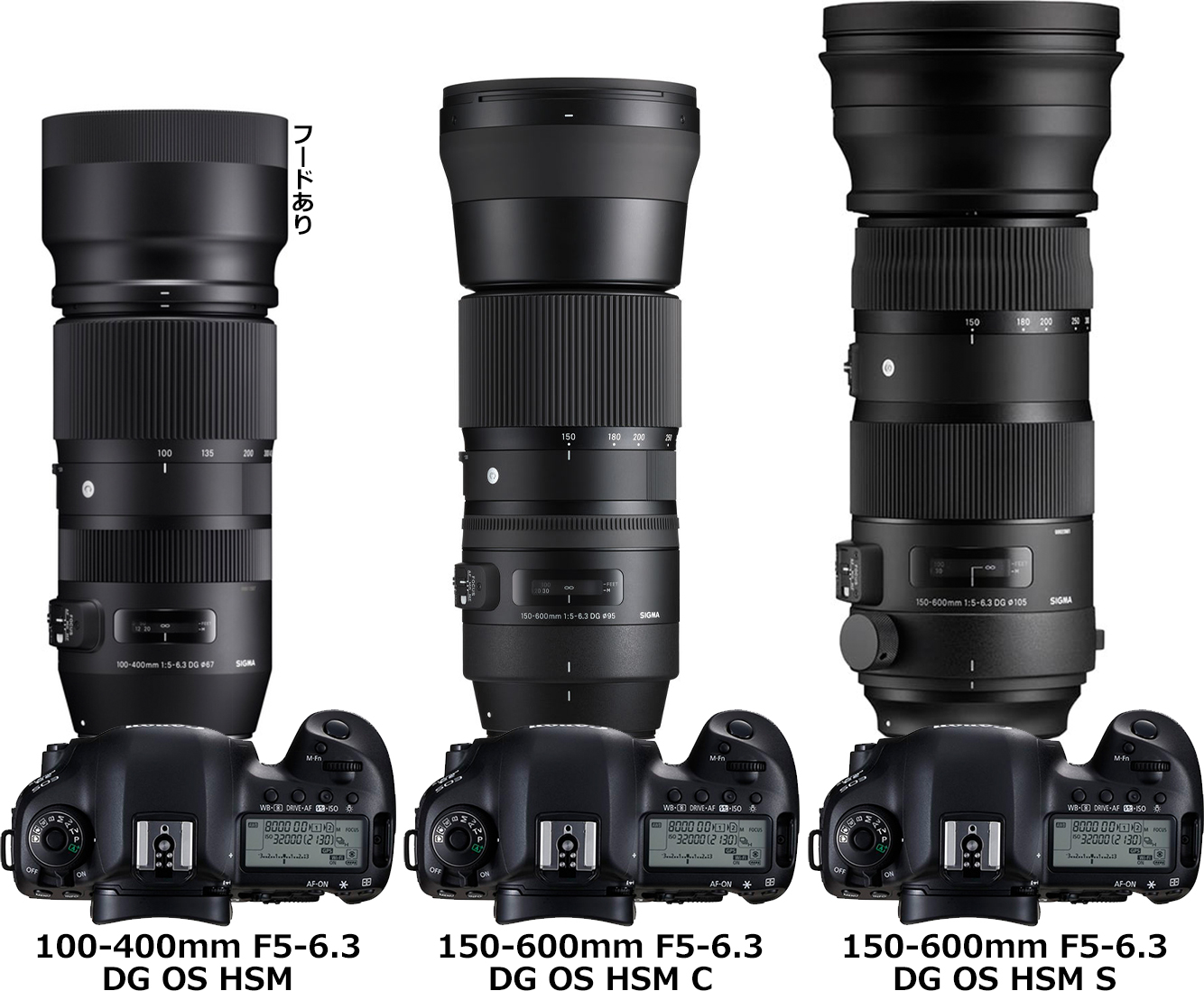シグマ「100-400mm F5-6.3 DG OS HSM | Contemporary」と「150-600mm F5-6.3 DG OS HSM | Contemporary/Sports」 2