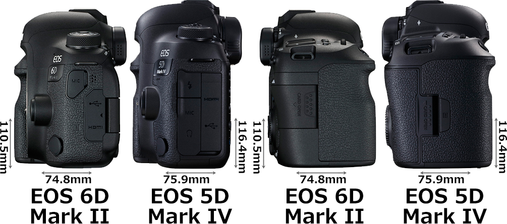 「EOS 6D Mark II」と「EOS 5D Mark IV」 4