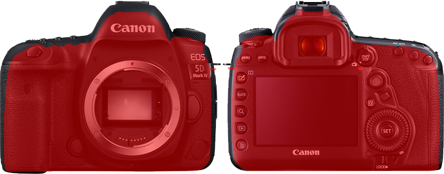 「EOS 6D Mark II」と「EOS 5D Mark IV」 5