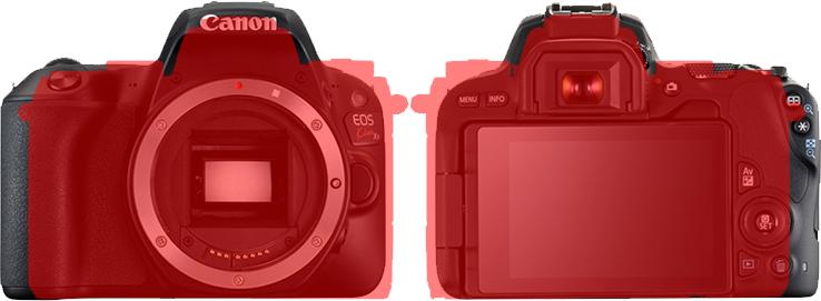 「EOS Kiss X9」と「EOS M5」 6