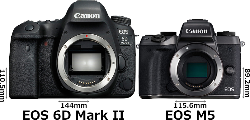 「EOS 6D Mark II」と「EOS M5」 1