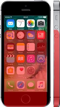 「NichePhone-S」と「iPhone SE」 4