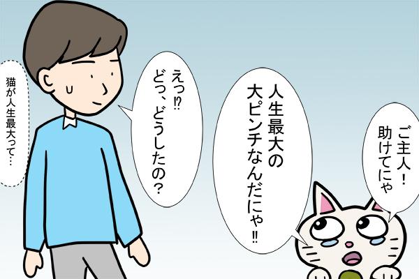 「恐怖の迷惑メールが届いた!」猫のゴマ絵日記 2