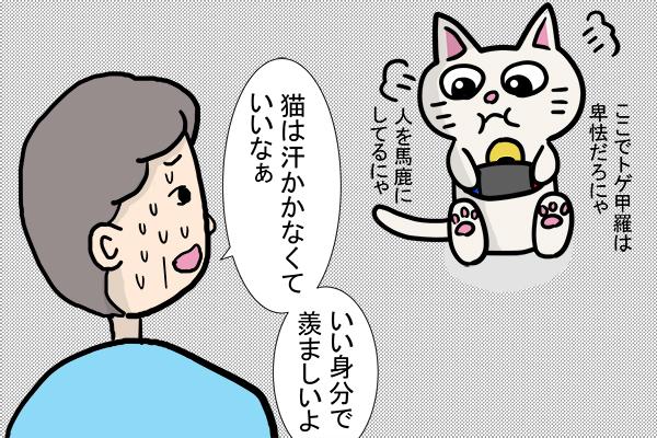 「汗をかく場所」猫のゴマ絵日記 2