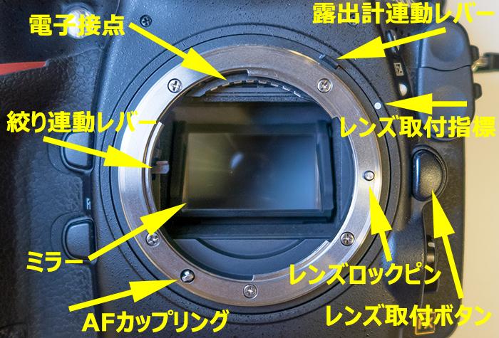 ボディ内AFモーター方式のカメラ