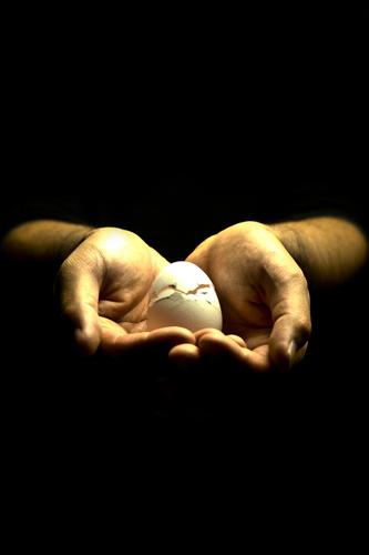 手の上の割れた卵 2の高画質画像
