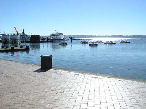 ニュージーランドの海辺 1の高画質画像