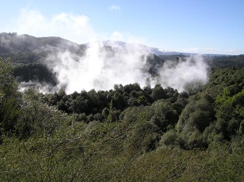 ニュージーランドの自然 5の高画質画像