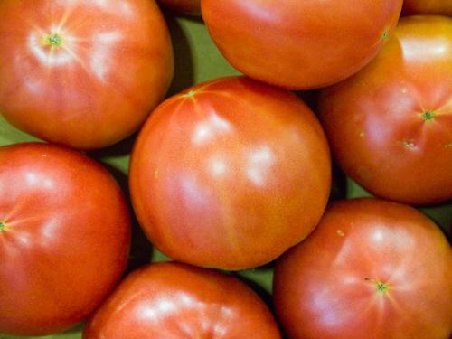 トマト 1の高画質画像
