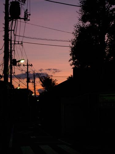 夕日 4の高画質画像