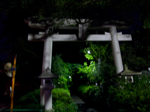 夜の神社の高画質画像