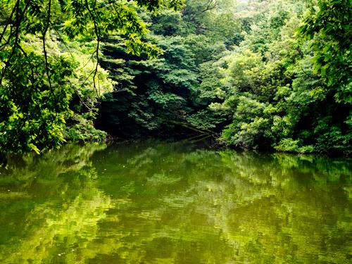 南池の高画質画像