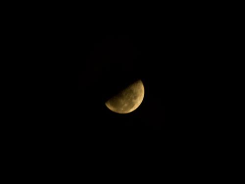 上弦の月の高画質画像