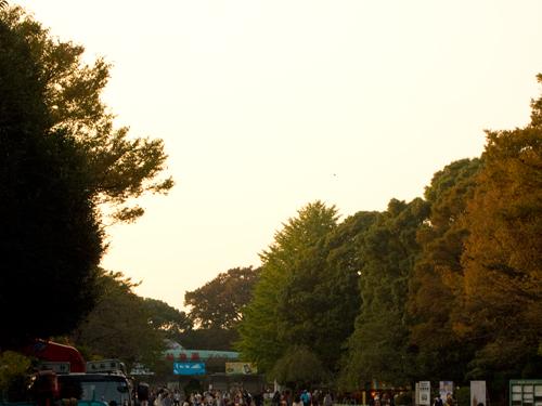 上野通り 4の高画質画像