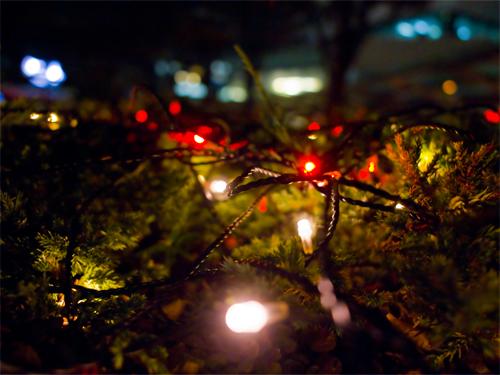 クリスマスイルミネーション 14の高画質画像