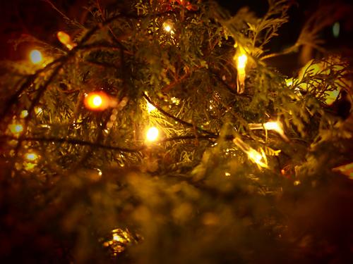 クリスマスイルミネーション 20の高画質画像