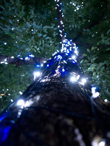 クリスマスイルミネーション 26の高画質画像