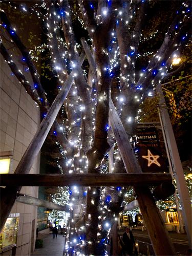 六本木クリスマスイルミネーション 2の高画質画像