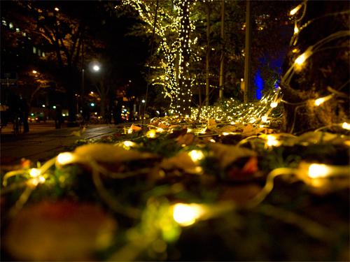 クリスマスイルミネーション 32の高画質画像