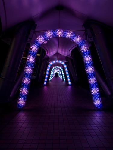 東京ドームシティのイルミネーション 1の高画質画像