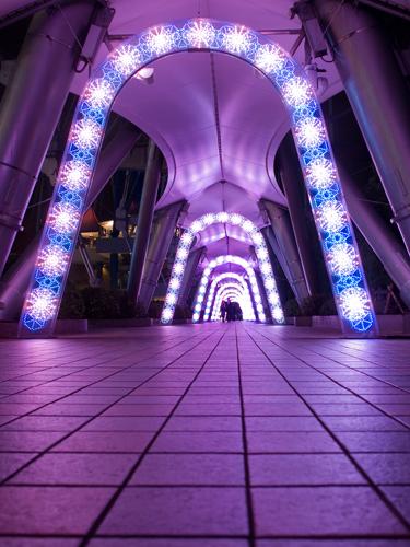 東京ドームシティのイルミネーション 2の高画質画像