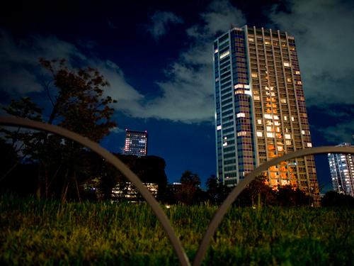 ビルに反射した東京タワーの高画質画像