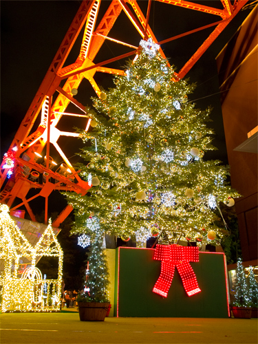 クリスマスイルミネーション 46の高画質画像