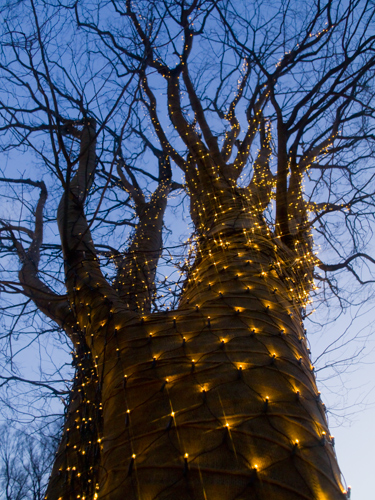 装飾された木 2の高画質画像