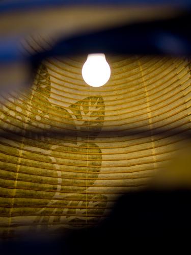 水天宮、提灯 2の高画質画像