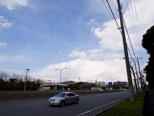 東京港野鳥公園の近く 2の高画質画像