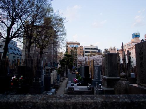 都内の墓地周辺の高画質画像