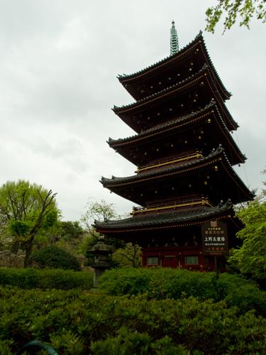 上野動物園の五重塔 1の高画質画像