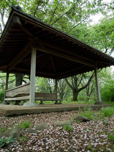 神代植物公園の休憩所 1の高画質画像