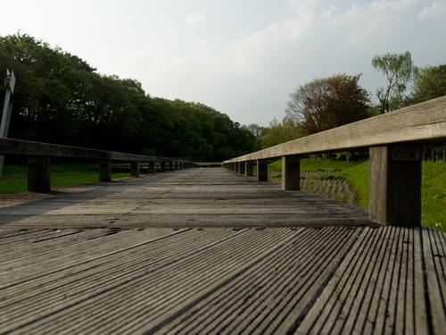 神代植物公園 13の高画質画像
