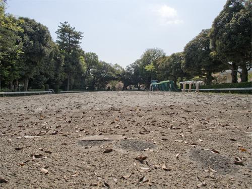 馬事公苑 2の高画質画像