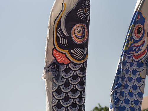 鯉のぼり、大蔵公園 1の高画質画像