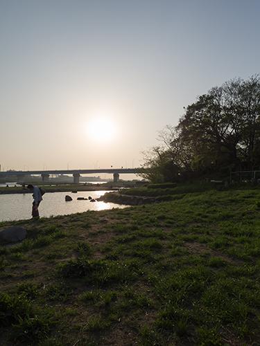 夕暮れの多摩川 1の高画質画像