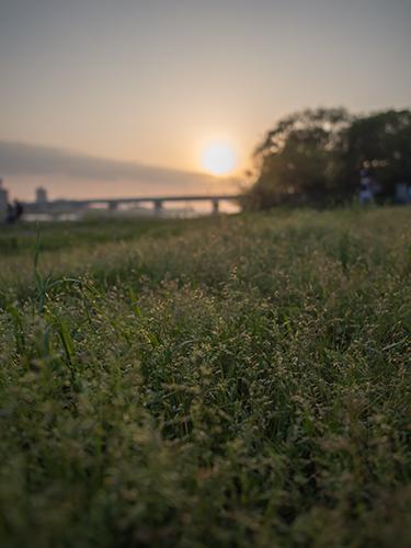 夕暮れの多摩川 22の高画質画像
