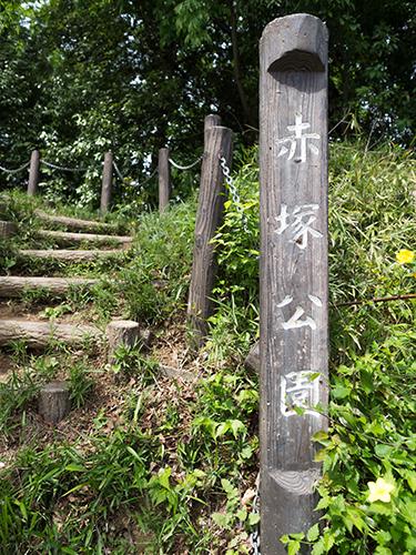 赤塚公園周辺 4の高画質画像