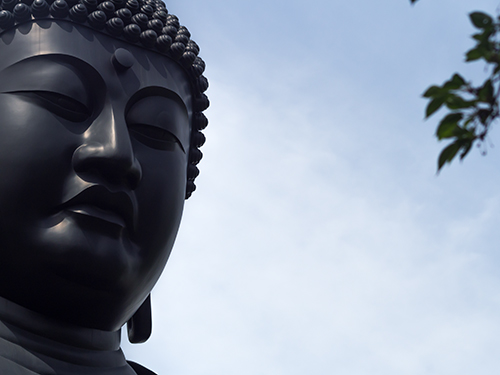 東京大仏、乗蓮寺 15の高画質画像