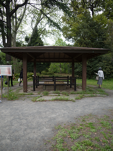 小石川植物園 17の高画質画像