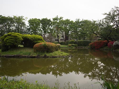 池、小石川植物園 1の高画質画像
