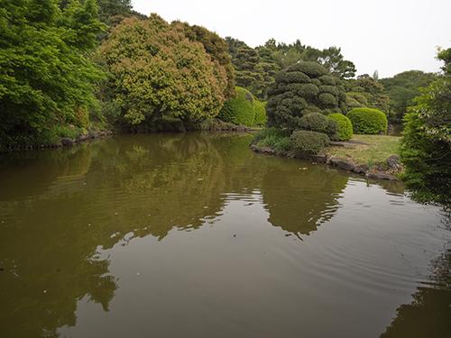 池、小石川植物園の高画質画像
