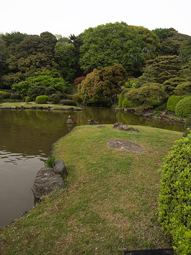 小石川植物園 35の高画質画像