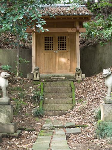 祭壇、小石川植物園の高画質画像
