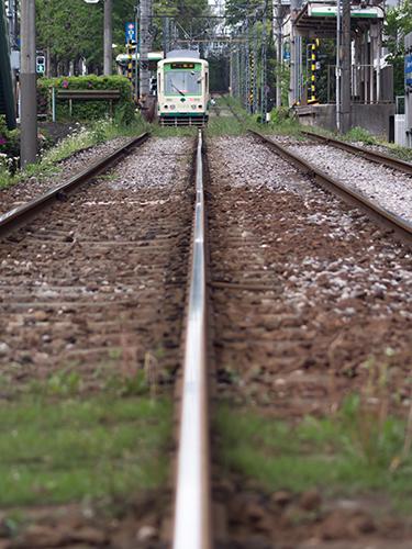 都電荒川線 15の高画質画像